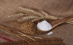Ears of wheat, seeds and flour in wooden spoon Royalty Free Stock Photo