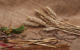 Ears of wheat and seeds on linen Stock Photography