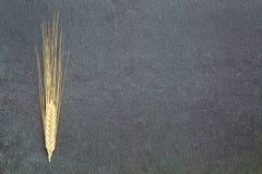 Ears of wheat on slate stone Stock Photography