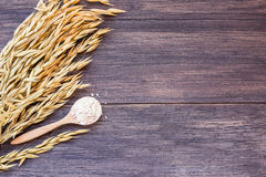 Ears of wheat on the table. stock photo