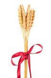 Ears of wheat tied with red ribbon Stock Photography