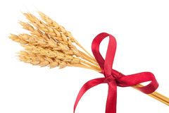 Ears of wheat tied with red ribbon Stock Photos