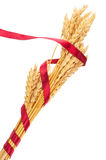 Ears of wheat tied with red ribbon Stock Images
