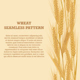 Ears of wheat vertical border seamless pattern for banners Stock Photos
