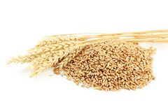 Ears of wheat and wheat grains Royalty Free Stock Photos