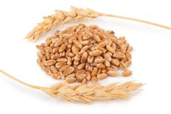 Ears of wheat and wheat grains Stock Photos