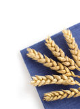 Ears of wheat on white Royalty Free Stock Photos