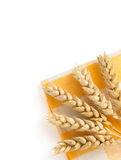 Ears of wheat on white Stock Image