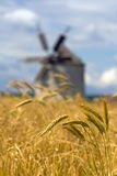 Ears of wheat and windmill Stock Photography