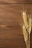 Ears of wheat on wood Stock Image