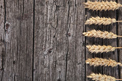 Ears of wheat on a wood background Stock Images