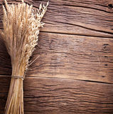 Ears of wheat on wood. Royalty Free Stock Images