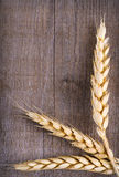 Ears of wheat on wooden background Royalty Free Stock Images