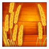 Ears of wheat on wooden Stock Images