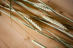 Ears of wheat on wooden surface. Ripe ears of wheat on wooden table surface Royalty Free Stock Photos