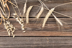 Ears of wheat on wooden table Royalty Free Stock Photography