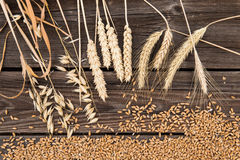 Ears of wheat on wooden table Royalty Free Stock Images