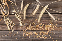 Ears of wheat on wooden table Royalty Free Stock Photo