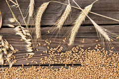 Ears of wheat on wooden table Stock Images