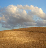 Eart hand sky. Agricultural land and crops with sky and clouds Royalty Free Stock Photography