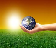 Earth. A hand with a globe and a grass field Royalty Free Stock Images