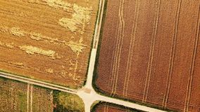 Earth from above. A field stock footage