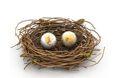 Earth And Nest Royalty Free Stock Photo