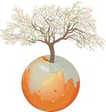 Earth - Apple tree. Vector illustration Earth - Apple and apple tree with growing tree Royalty Free Stock Photo