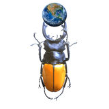 The earth with a beetle ,including elements furnished by NASA Stock Images