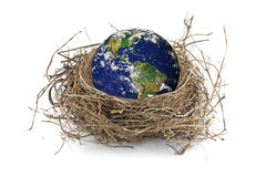 Earth in bird nest. Photo of the Earth from NASA Royalty Free Stock Photography