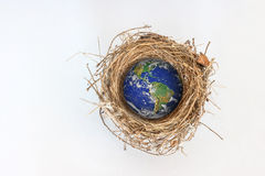 Earth in bird nest Royalty Free Stock Photos
