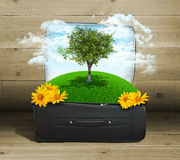 Earth with buildings and trees in travel bag Royalty Free Stock Photos