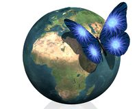 Earth with cool butterfly colorful creative back Stock Photo