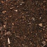Earth covered with mulch Royalty Free Stock Photo
