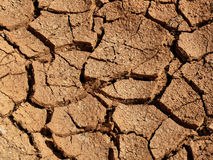 Earth cracked. Texture of dried and cracked, brown earth Royalty Free Stock Photos