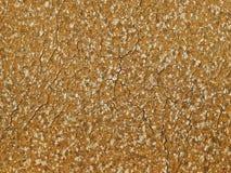 Earth cracks brown top pattern Stock Image