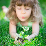 Earth day. Child holding young green plant in hands. Kid lying on grass in spring park. Earth day concept Stock Image