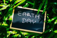 Earth day concept, earth day word writing on chalkboard with nat. Ure green leaves background stock photography