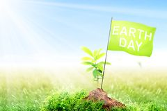 Earth day concept. Young plant and small pole with green flag with Earth day message on fertile soil in meadow with sunlight and blue sky background. Earth day stock images