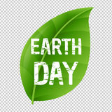 Earth Day Leaf And Transparent Background. With Gradient Mesh, Vector Illustration Stock Image