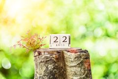 Earth Day and New Life concept. Young tree growth up on dead tree with wooden calendar 22 April on green leaf bokeh background stock images