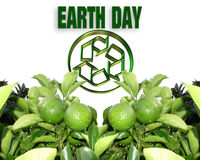 Earth Day Recycle. Image and illustration composition for Earth Day background Royalty Free Stock Photos