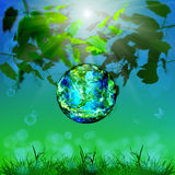 Earth day.Season nature. Stock Image