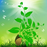 Earth day. Season nature. Spring background Royalty Free Stock Photo