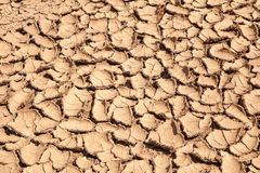 Earth dried up in drought Stock Image