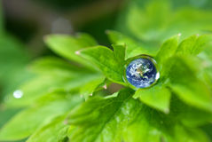 Earth in drop Royalty Free Stock Photo