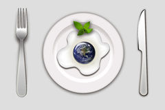 Earth in an egg Stock Images