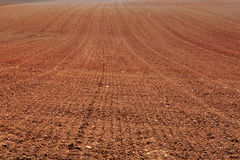 Earth in a field for agricultural cultivations. Stock Photography