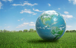 Earth on a field of grass Royalty Free Stock Photography