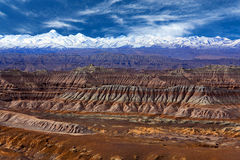 Earth Forest Geopark in Zhada County, Tibet Royalty Free Stock Images
